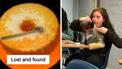 """Photo of You'll Lose Your Appetite After Seeing These Images Posted By """"Totally Gourmet"""""""