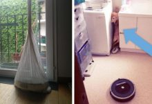 Photo of 16 People Who Left The Robot Vacuum Alone And Found It In The Most Absurd Situations