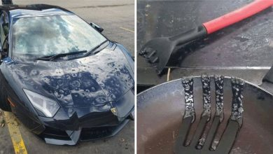Photo of 19 People Who Are The Exact Definition Of What It's Like To Have A Bad Day