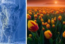 Photo of 16 Impressive Images Confirm That Mother Nature Is An Artist Of Incomparable Talent