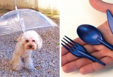 Photo of 14 Objects That Some Have Finally Invented And That Simplify Everyday Life