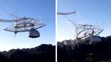 Photo of Huge Telescope Crashes To Ground After Cable Breaks. Video Of Collapse Is Astounding