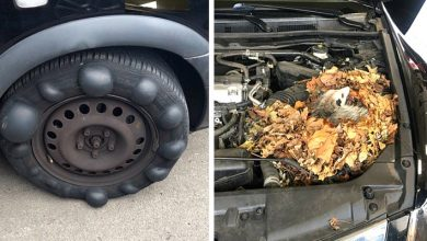 Photo of These Mechanics Posted Photos Of The Most Disastrous Cars Customers Brought To A Garage