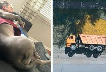 Photo of Magic Of Perspective 20 Photos Taken From Unusual Angles That Look Like Extraordinary Scenes