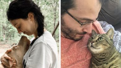 """Photo of 20 Moving Photos Show Why They Say """"An Animal Changes Life"""""""
