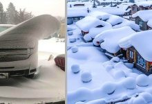 Photo of 21 Fascinating Photos Show Us That Snow Can Make Even The Simplest Things Beautiful