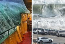 Photo of 15 Seasickness-proof Images Showing All The Devastating Power Of The Waves