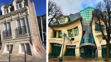Photo of 19 Crazy And Extravagant Buildings That Were Designed By True Architectural Stars.