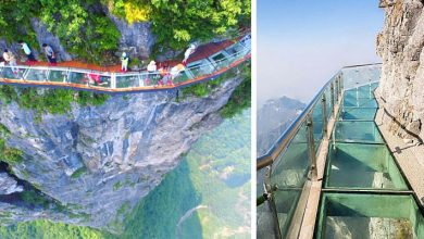 Photo of This Glass Walkway Is Suspended 1,400 Meters On The Side Of A Mountain. Photos Make Your Head Spin.