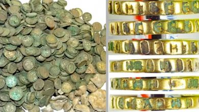 Photo of Discovery Of A Treasure With More Than 6,500 Medieval Coins And A Princess's Ring, It Was Under A Wheat Field.
