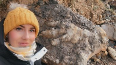 """Photo of Woman Searches For Crustaceans And Finds """"Biggest Dinosaur Footprint Ever"""""""