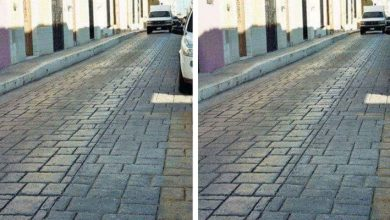 Photo of Are They Two Different Photos Or The Same? Test Yourself With This Optical Illusion.