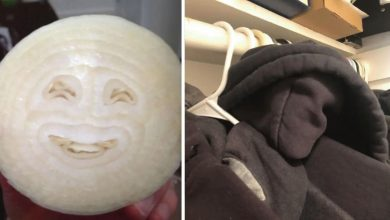 Photo of 26 Photos That Perfectly Show What Pareidolia Is.