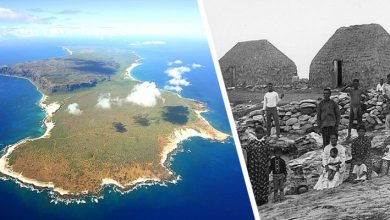 Photo of The Forbidden Island Of Hawaii: A Paradise On Earth Where We Still Live Like 200 Years Ago.