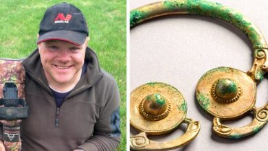 Photo of He Goes Out With The Metal Detector And Returns Home Millionaire: He Has Found Priceless Viking Treasure.