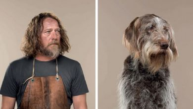 Photo of Photographer Puts Dogs And Their Owners Side By Side, And The Resemblance Is Undeniable.