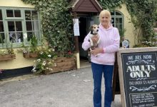 """Photo of The Owner Of A Pub Forbids Children: """"They Are Rude And Noisy"""""""