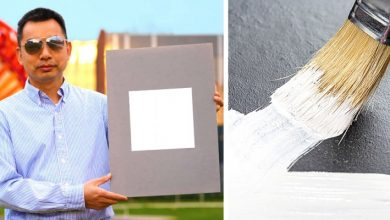 Photo of Team Of Scientists Create The Whitest Paint In The World: It Can Fight Global Warming.