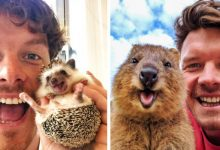Photo of This Photographer Befriends All The Animals He Meets And Takes Adorable Selfies With Them.