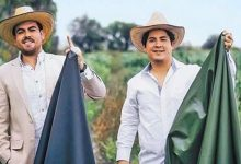 """Photo of Two Young Men Create An Ecological """"Skin"""" From Cacti: It Is Almost Identical To The Real One."""