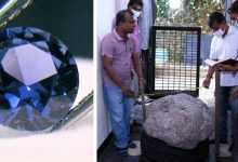 Photo of Workers Dig Well In Man's Garden, Discover Sapphires Worth $ 100 Million.