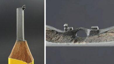 Photo of Artist Transforms Simple Pencils Into Extraordinary Miniature Works Of Art.