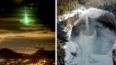 Photo of 10 Photos That Shed New Light On The Incomparable Beauty Of Our Planet.