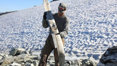 """Photo of A """"Prehistoric"""" Ski Discovered In Norway: It Is 1300 Years Old And Is Perfectly Preserved."""