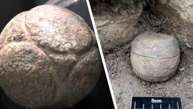 Photo of Mysterious Stone Spheres Discovered In Scotland: 5,500 Years Old.